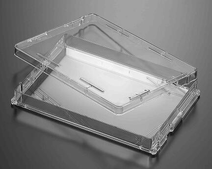 细胞培养板 (纸塑袋装)