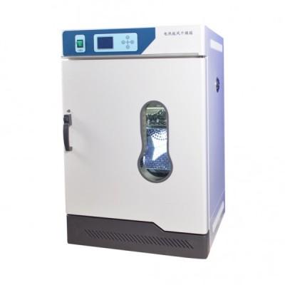 电热恒温鼓风干燥箱101-A1(80L)